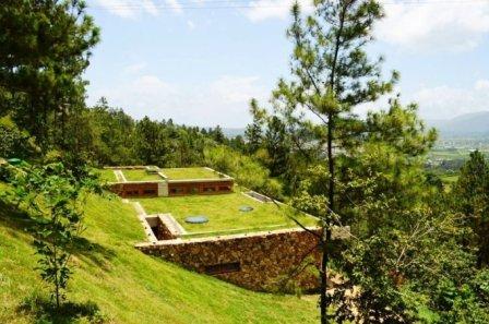 Zelená střecha se hodí i moderní domy