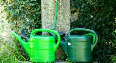Využití dešťové vody na zahradě