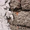 """Skladba omítky - cementový postřik, jádrová omítka a finální """"fajnová"""" omítka"""