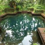 Přírodní bio bazén