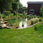 Přírodní koupací jezírko skrášlí zahradu