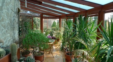 typy zimnich zahrad