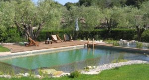 Bio bazén nabídne plnohodnotné koupání bez chemie