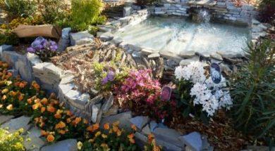 Zahradní okrasné jezírko
