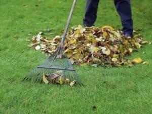 Hrabání listí - údržba trávníku na podzim