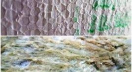 Čím zateplit fasádu domu? Minerální vatou, nebo polystyrenem EPS?