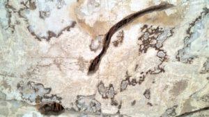 Rákosový strop. V trhlině v omítce lze vidět obnaženou rákosovou rohož.