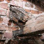 Rekonstrukce trámového stropu - uhnilé zhlaví trámu