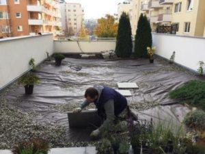 Realizace zelené střechy