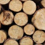 Topení dřevem. Převažují výhody nad nevýhodami?