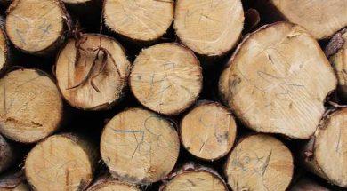 Topení dřevem – kulatina smrk