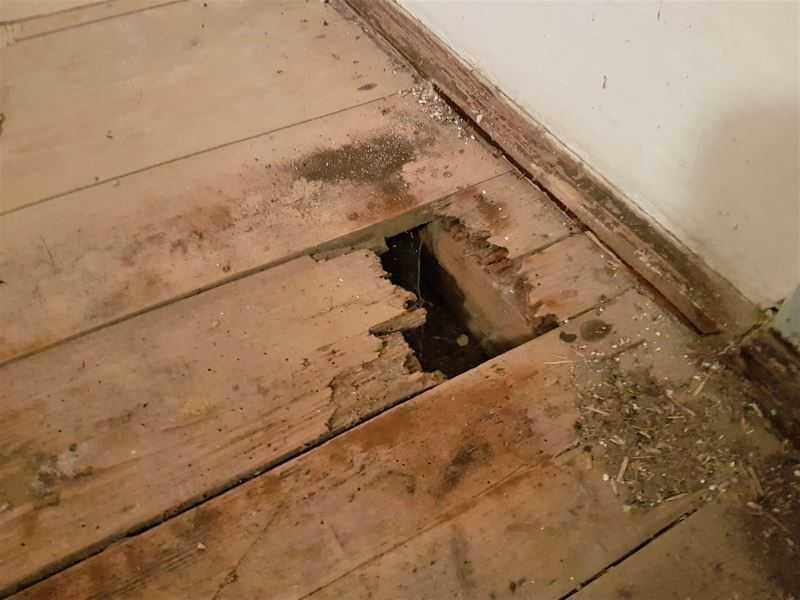 Rekonstrukce podlahy v bytě