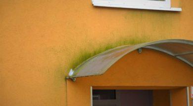 Zelené řasy na fasádě